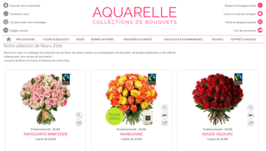 site-aquarelle